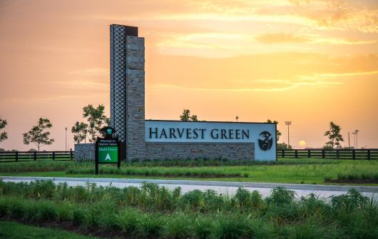Harvest Green is Growing Strong